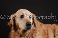 M&N Photography -DSC_5495