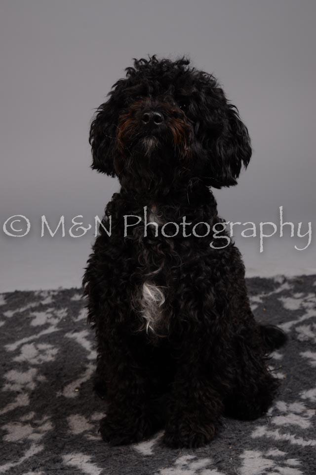 M&N Photography -DSC_2641