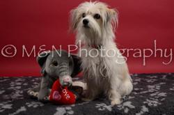 M&N Photography -DSC_8392