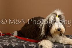 M&N Photography -_SNB0598