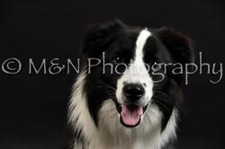 M&N Photography -DSC_2607