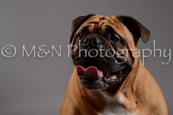 M&N Photography -DSC_1718