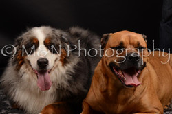 M&N Photography -DSC_0206