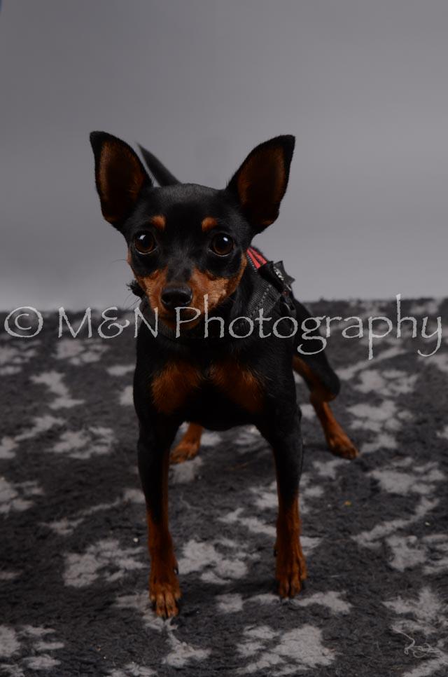 M&N Photography -DSC_2781