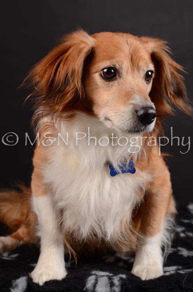 M&N Photography -DSC_5445