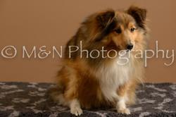 M&N Photography -_SNB0706