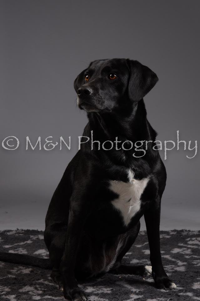 M&N Photography -DSC_2025