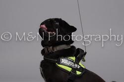M&N Photography -DSC_2543