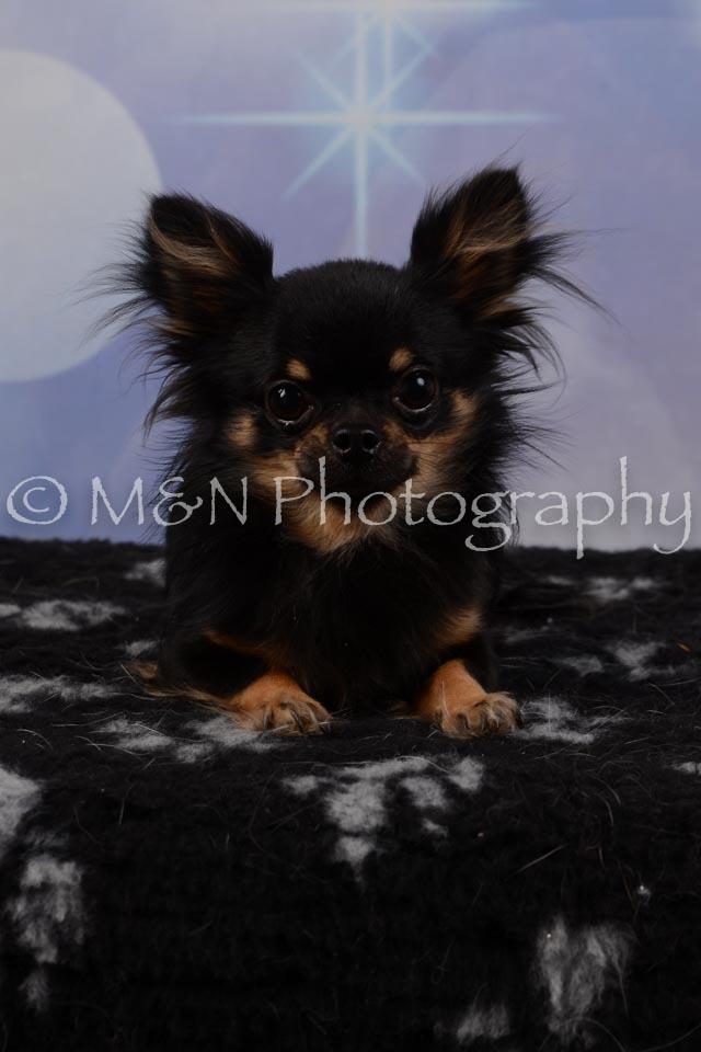 M&N Photography -DSC_6785