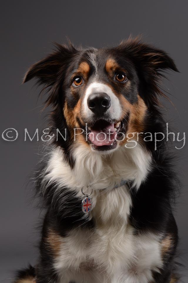 M&N Photography -DSC_2062