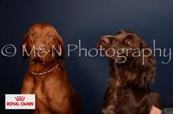M&N Photography -DSC_4544-2