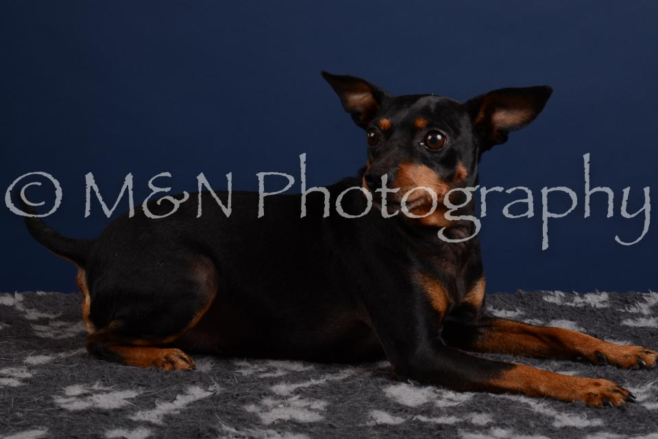 M&N Photography -DSC_3868