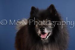 M&N Photography -DSC_4902
