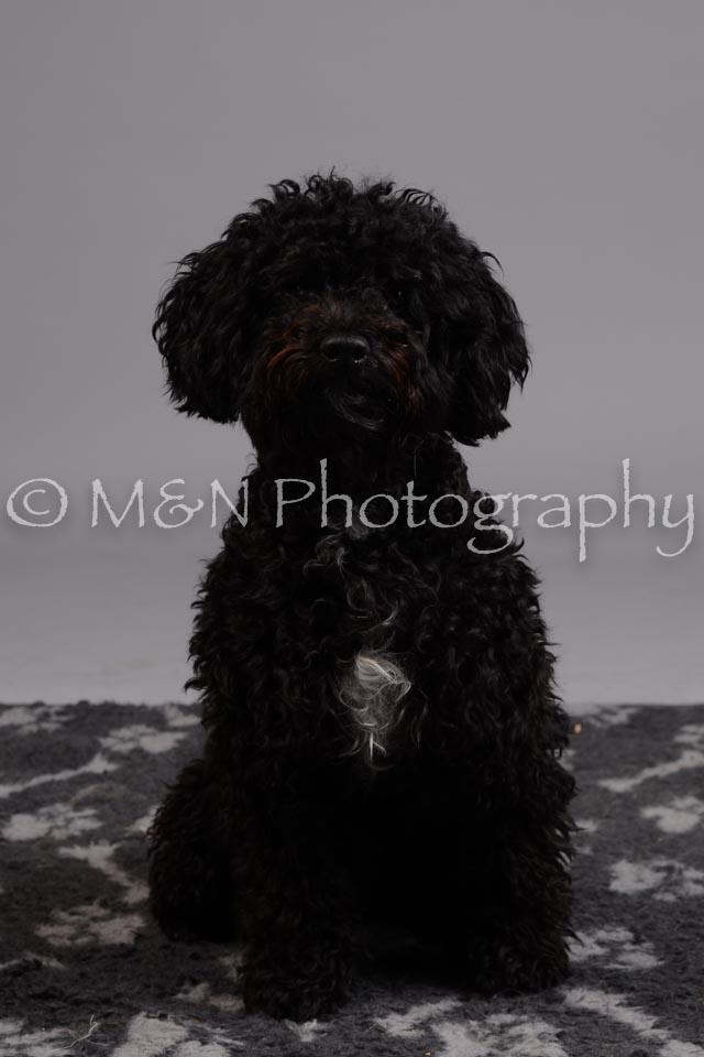 M&N Photography -DSC_2635