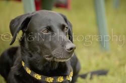 M&N Photography -4463