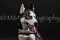 M&N Photography -DSC_2671