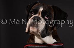 M&N Photography -DSC_5633