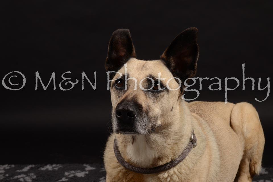 M&N Photography -DSC_9748