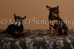 M&N Photography -_SNB0547