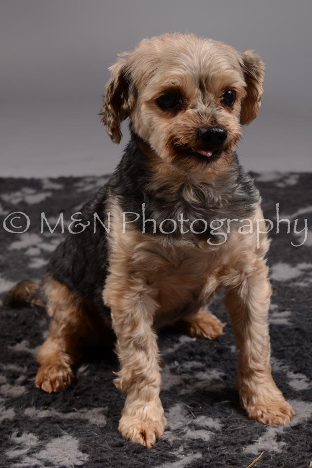 M&N Photography -DSC_1799