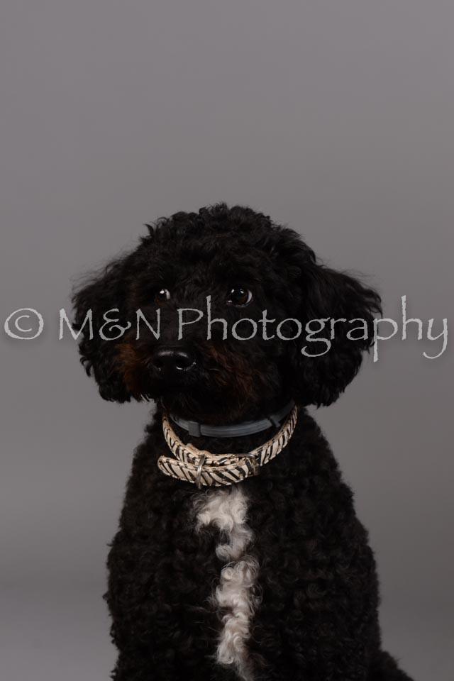 M&N Photography -DSC_2415