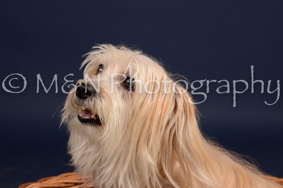 M&N Photography -DSC_0815