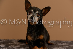 M&N Photography -_SNB0565