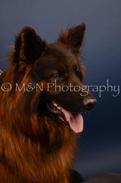 M&N Photography -DSC_4639