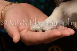 M&N Photography -_SNB0746