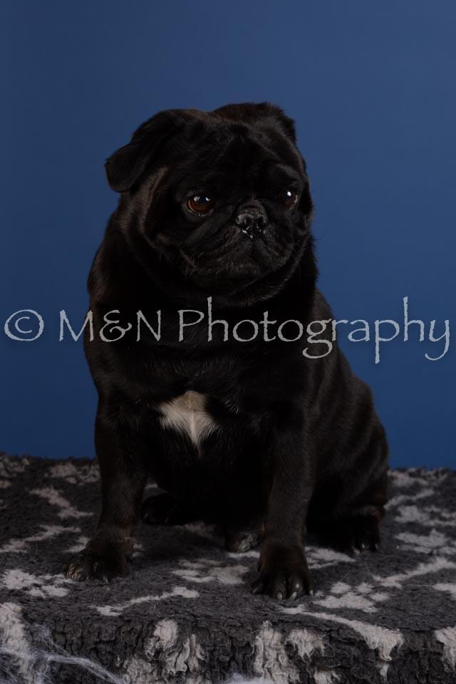 M&N Photography -DSC_5069