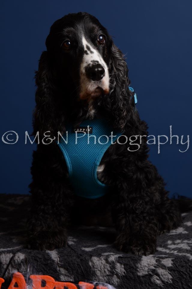 M&N Photography -DSC_5106-2