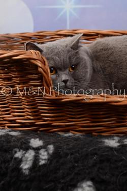 M&N Photography -DSC_6843