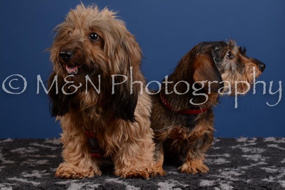 M&N Photography -DSC_5257