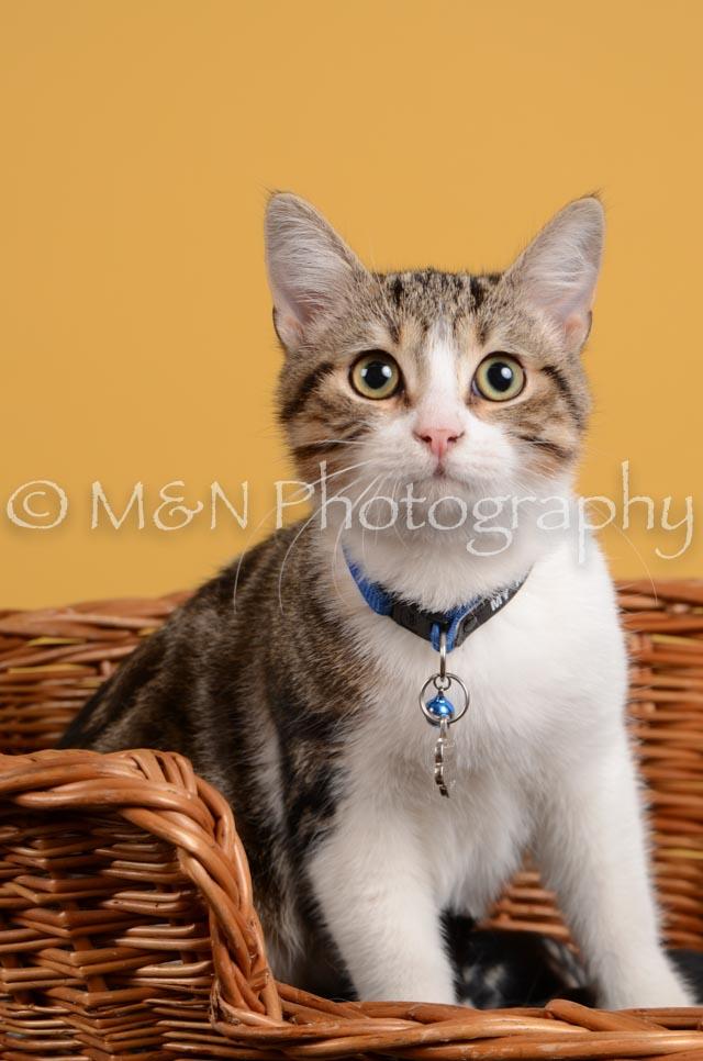M&N Photography -DSC_4792