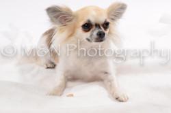 M&N Photography -DSC_9054