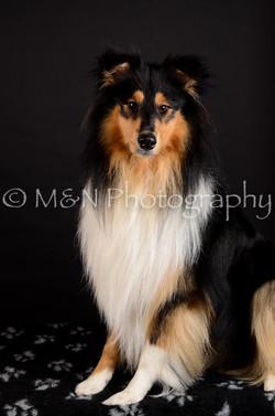 M&N Photography -DSC_5616