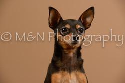 M&N Photography -_SNB0559