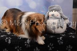 M&N Photography -DSC_6934