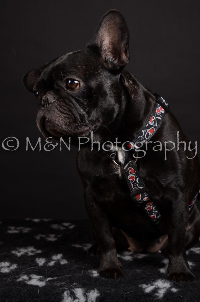 M&N Photography -DSC_5667