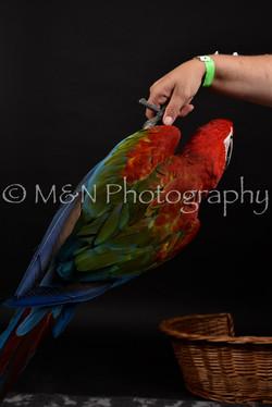 M&N Photography -DSC_2698