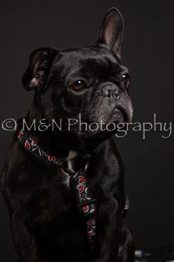 M&N Photography -DSC_5670