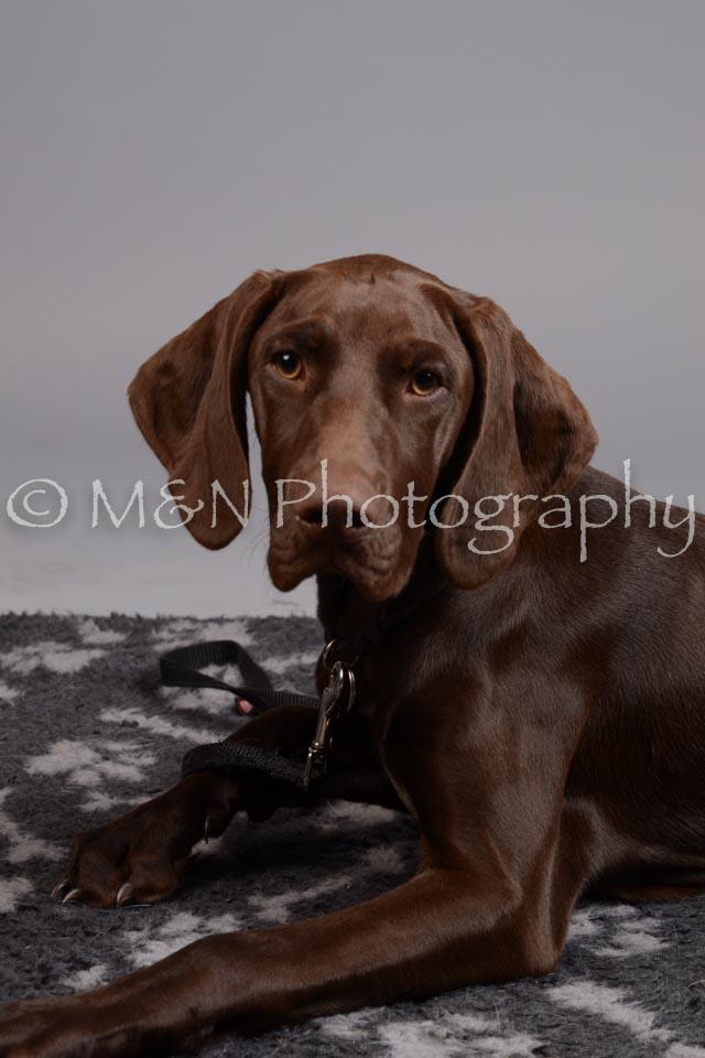 M&N Photography -DSC_2604