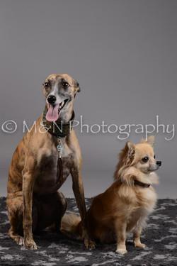 M&N Photography -DSC_1773