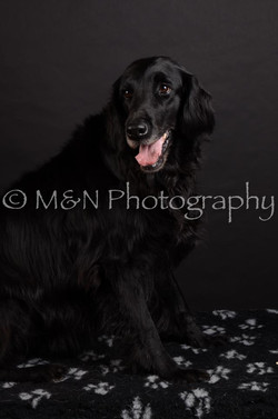 M&N Photography -DSC_5850