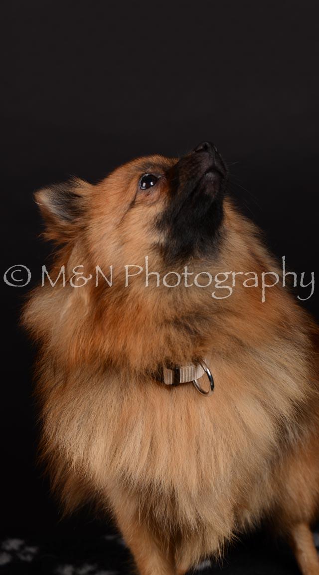 M&N Photography -DSC_5860-2
