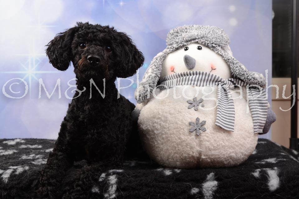 M&N Photography -DSC_6878