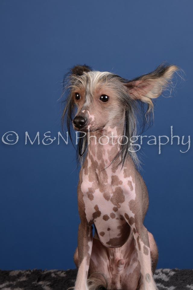 M&N Photography -DSC_5183