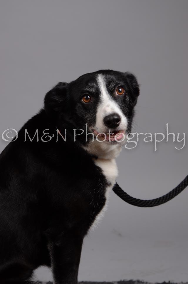 M&N Photography -DSC_2892