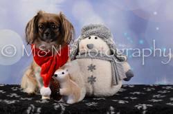 M&N Photography -DSC_6698