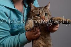 M&N Photography -DSC_2944